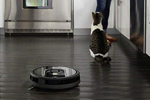 Roomba 960 Cleaning priority