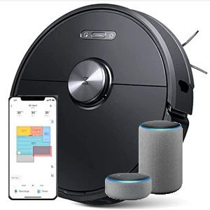 Smart Features and Convenience Roborock S6